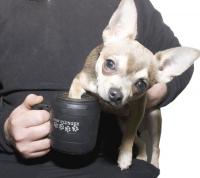"Лапомойка для собак ""Paw plunger"" малая черная"