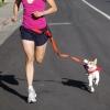 Поводок для бега с собакой