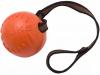 """Мяч с лентой """"Доглайк"""" средний, ф8,5см, лента 70см."""
