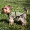 Охлаждающая попона для собак OSSO Fashion.  Размер 25